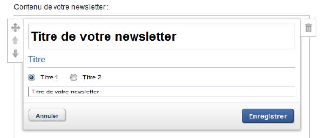 Modifier le texte de la newsletter