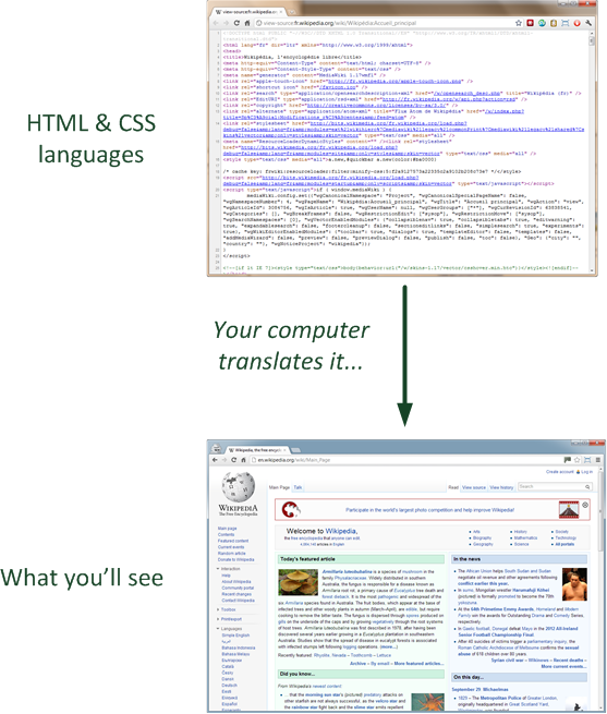 From HTML to the screen