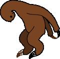 paresseux accroupi